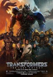 Inge-Sildnik-Transformers